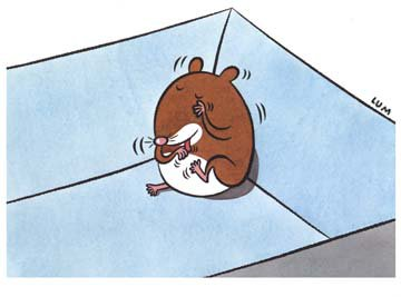 "From ""My Pet Hampster"", art by Bernice Lum"