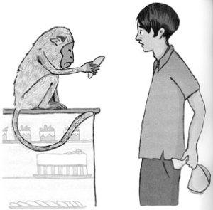 Lal encounters a monkey