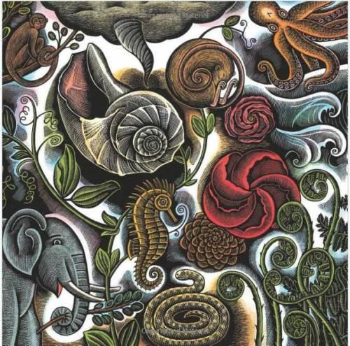 """from """"Swirl by Swirl"""", illustration by Beth Krommes"""