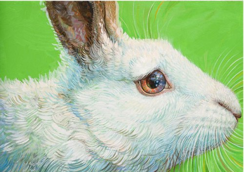 "detail from ""The Magic Rabbit"""