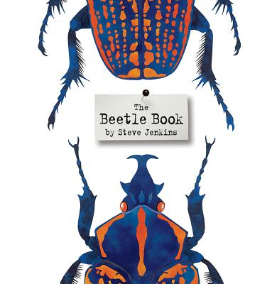 """The Beetle Book,"" written and illustrated by Steve Jenkins (Houghton Mifflin)"